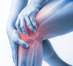 Knee Active Plus prijs